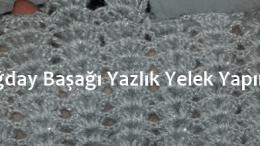 Amigurumi yelek tarifi | Amigurumi, Yelek, Barbie | 146x260